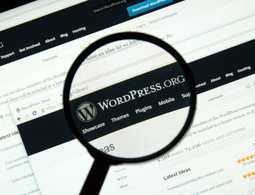 Our Favourite WordPress Plugins