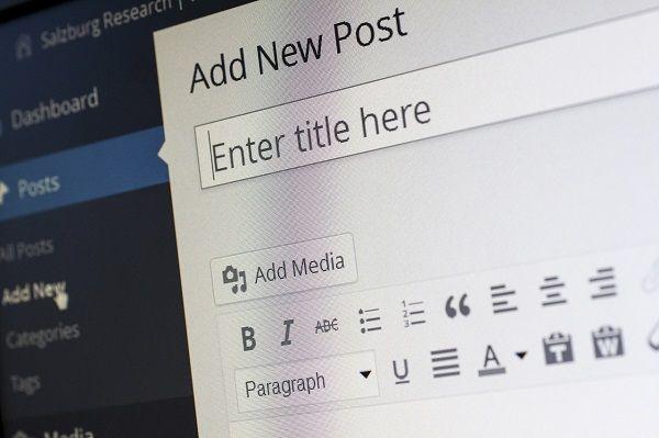 WordPress website design for a blog.